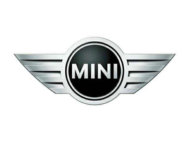 Mini Logo Image